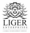 LigerEnterprises2017.jpg