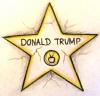 TrumpTrampStampImage.jpg
