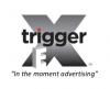 triggerex2018.jpg