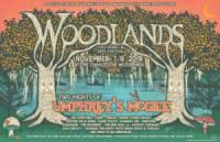 Woodlands2019.jpg